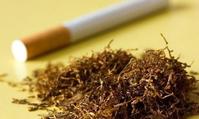Αργολίδα: Δυο συλλήψεις στην Επίδαυρο για λαθραίο καπνό