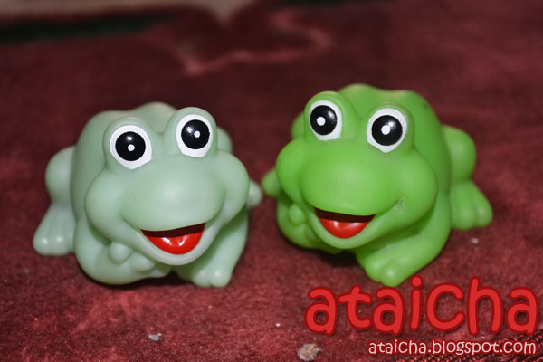 Photo : Katak Oh Katak!!