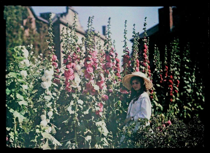 40 Old Color Pictures Show Our World A Century Ago - Girl In A Garden With Hollyhocks, 1908