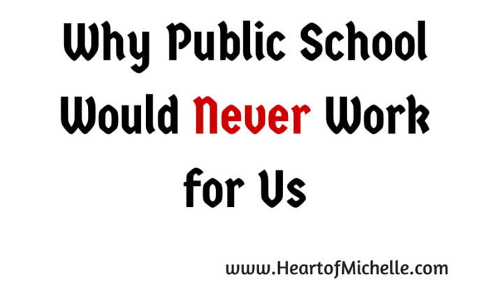 A homeschool mom shares the reasons she believes public school wouldn't work for her children.