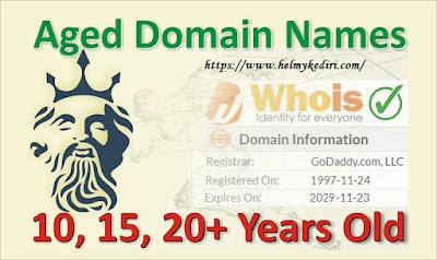 Situs penyedia age domain premium