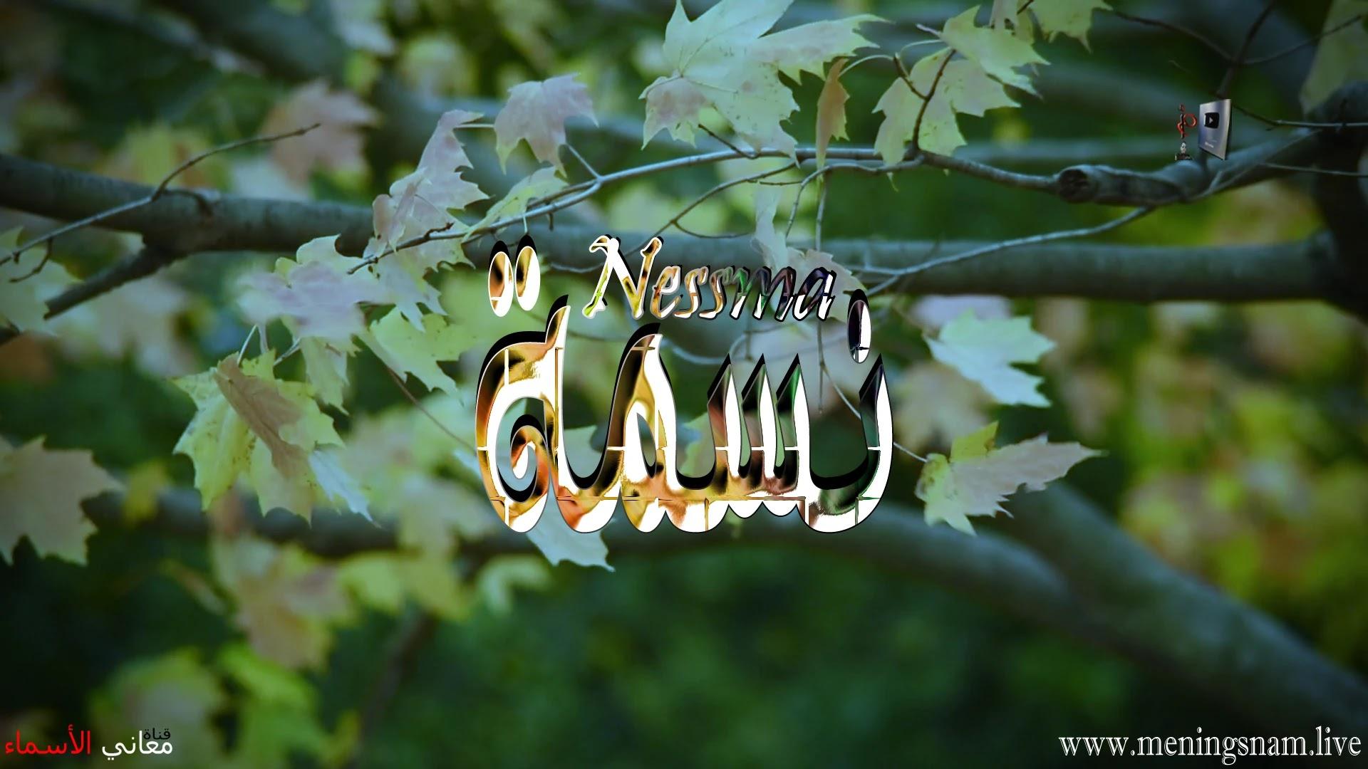معنى اسم نسمة وصفات حاملة هذا الاسم Nessma