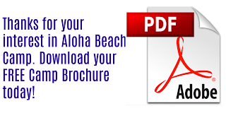 Brochure request pdf logo