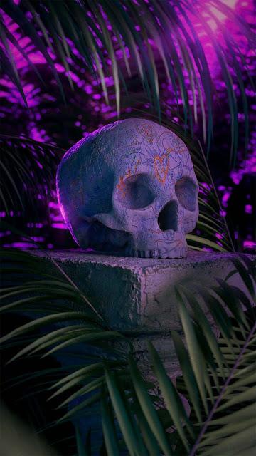 23 Skull Fish Art, Skeleton Skull, Magic Art Skull HD Wallpapers 4K 5K for iPhone and Android
