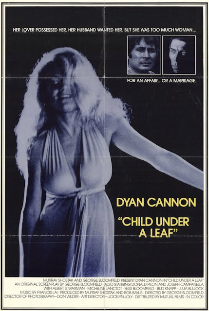 Dyan Cannon, Child Under a Lead poster