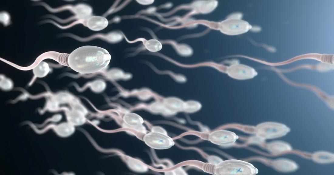 izgolodavshiesya-po-sperme