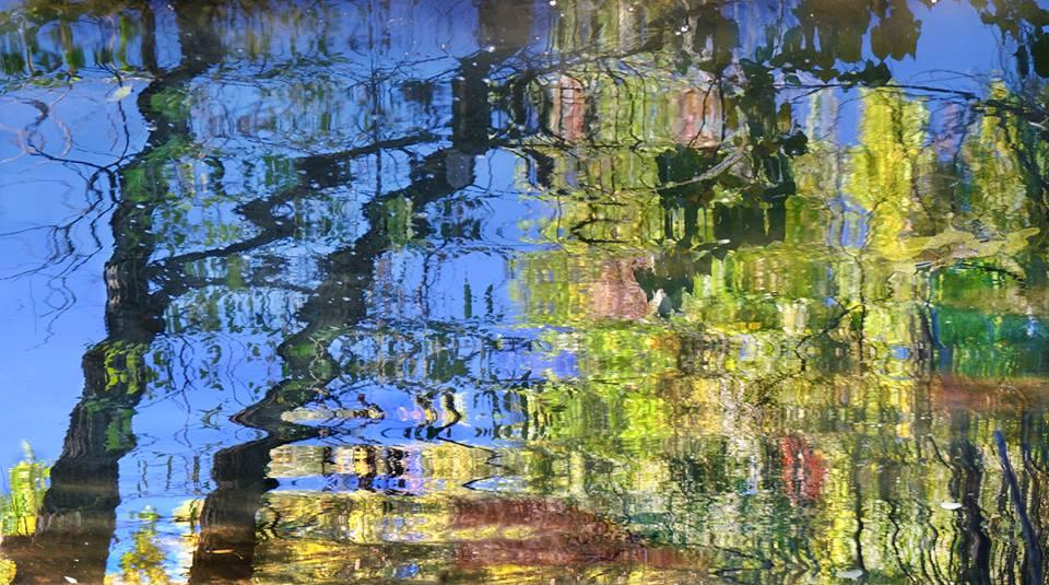 Contemporary Landscape Artists International Landscape Fine