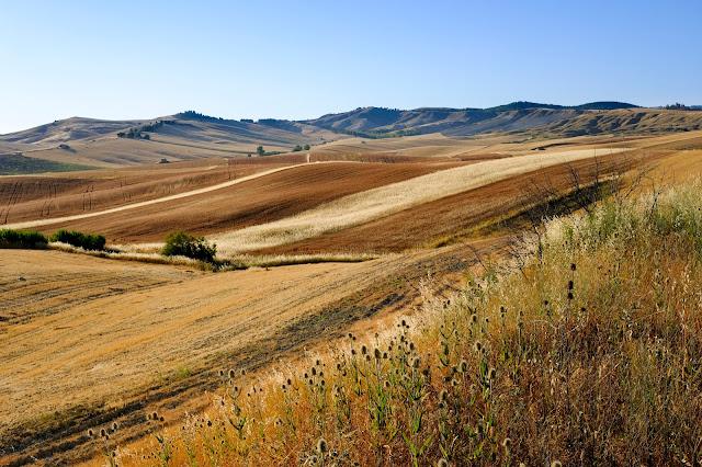 Panorama nelle campagne di Matera. Fotografia di Giovanni Battisti