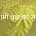 शमी वृक्ष का महत्व | Shami Vruksh Mahatva |