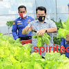 Kompolnas Berkesempatan Panen Perdana Hidroponik, Inovasi Ditpolair Polda Kalteng Dalam Ketahanan Pangan