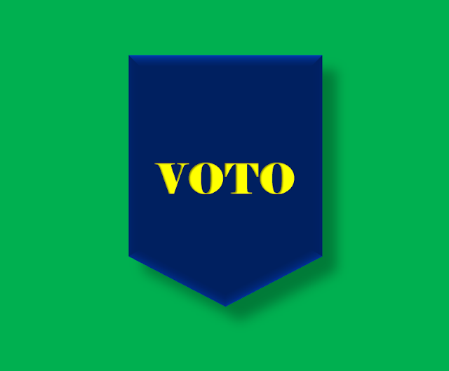 A imagem nas cores do Brasil diz: voto.