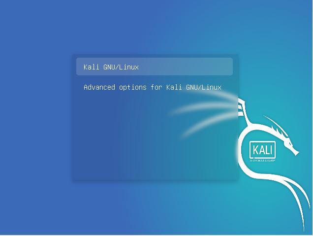 Advanced Option For Kali Linux