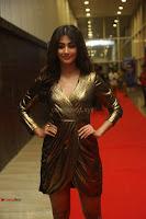 Pooja Hegde looks glamarous in deep neck sleevless short tight golden gown at Duvvada Jagannadham thank you meet function 018.JPG