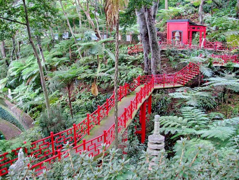 Oriental garden in Monte Palace tropical garden