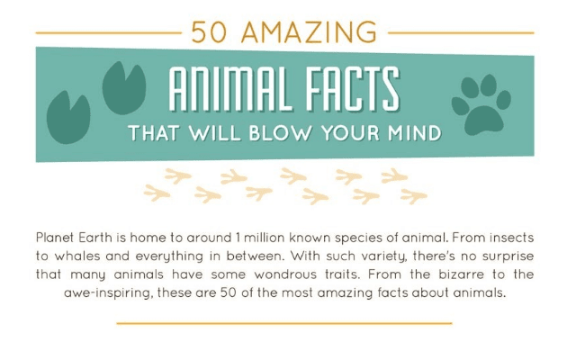 50 Amazing Animal Facts That Will Blow Your Mind