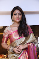 Actress Shriya Saran Stills in Saree at VRK Silks Launches at Himayat Nagar  0011.JPG
