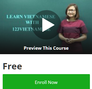 udemy-coupon-codes-100-off-free-online-courses-promo-code-discounts-2017-learn-vietnamese-for-beginners