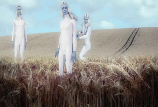 Police Officer Sighted Tall White Aliens Inspecting Crop Circle