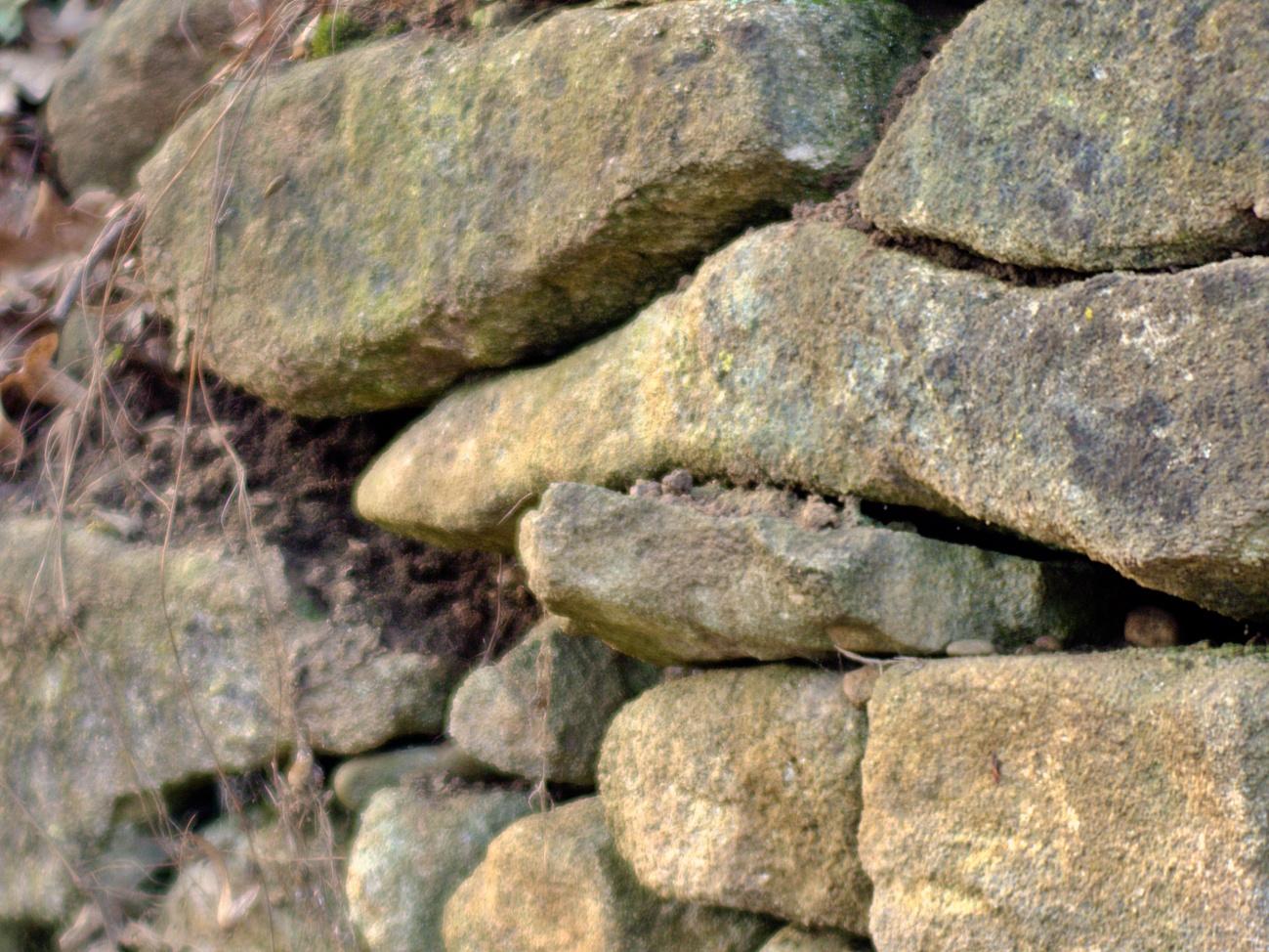 Fassaden&Mauern #17 — Alte Weinbergmauer