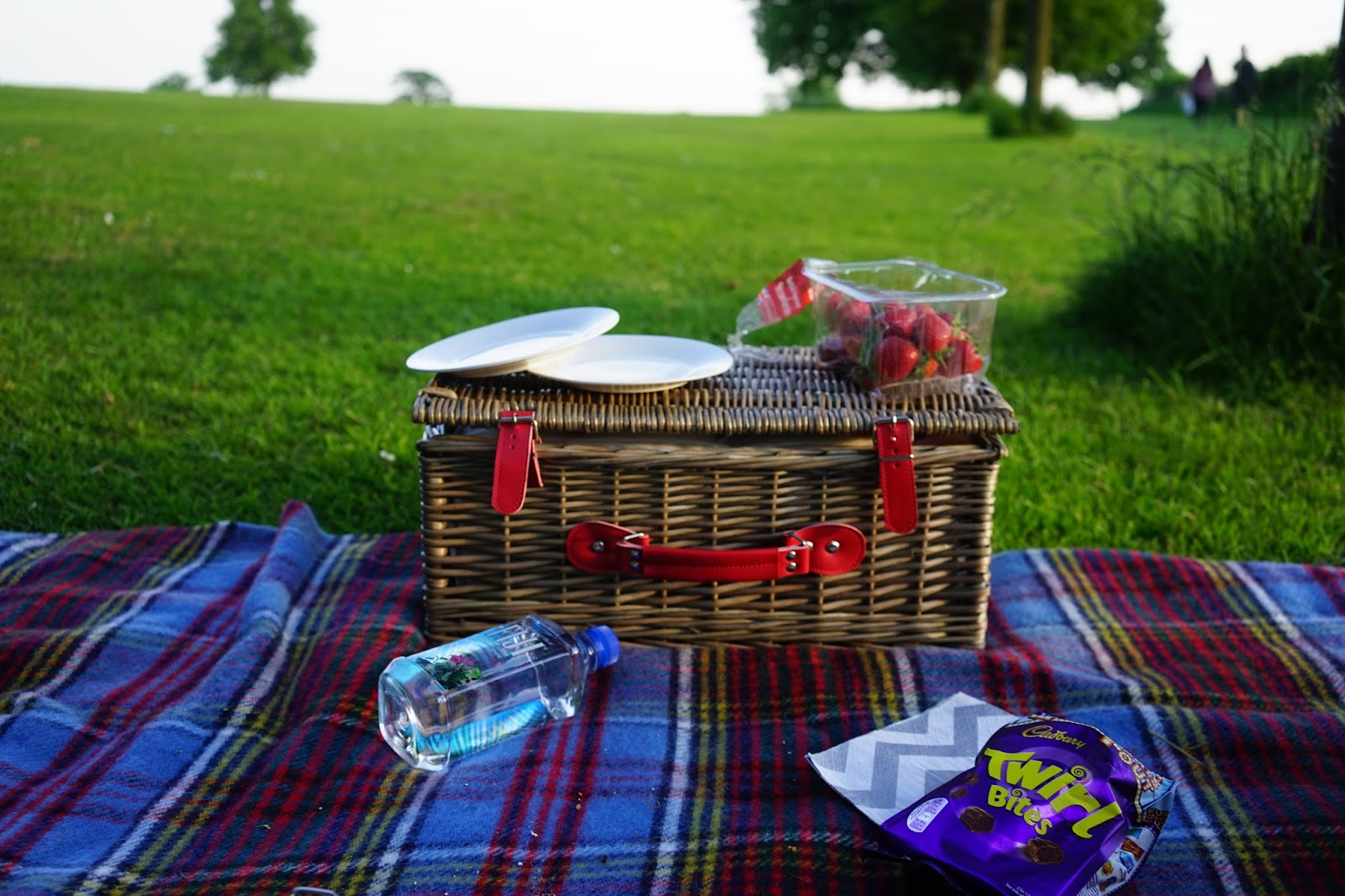 Emtalks: A Picnic In The Park; Favourite Healthy Picnic Foods
