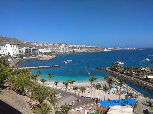 Which Canary Island is best for families