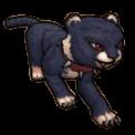 Midnight Cat Cub - Pirate101 Hybrid Pet Guide