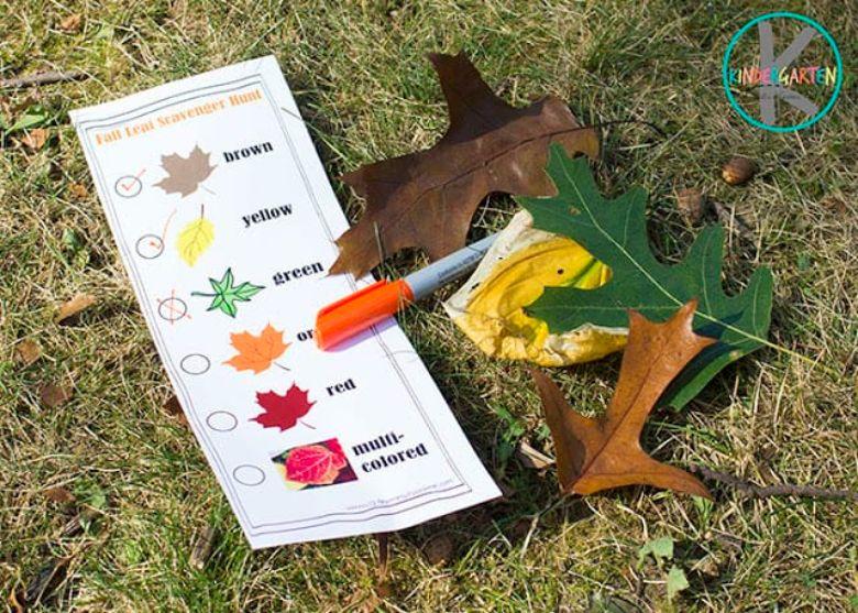 fall leaf scavenger hunt activity