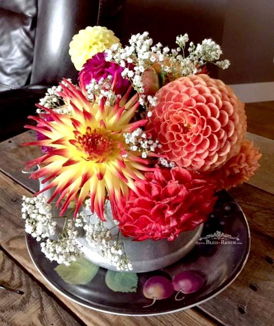 Dahlia Flowers, Bliss-Ranch.com