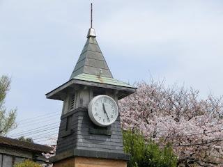 鎌倉駅の桜