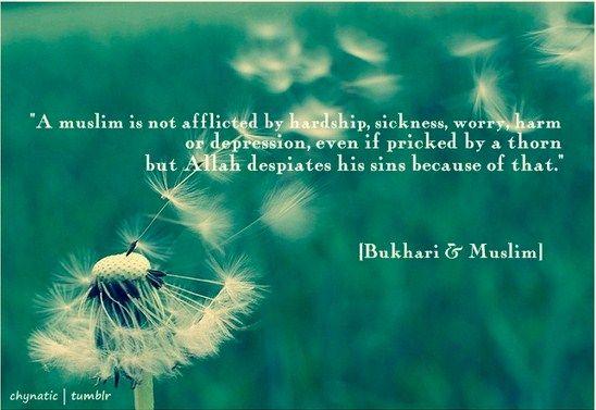 Al-Anwar-Hikmah, Kebenaran Janji Allah