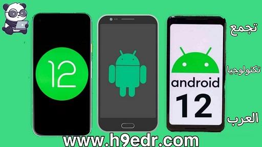 android 12,android 12 update,android 11,android 12 leak,miui 12 android 11,android 12 first look,android 11 features,miui 12,android 10,android 10 oppo,10 android,android 2020,oppo f11 android 10