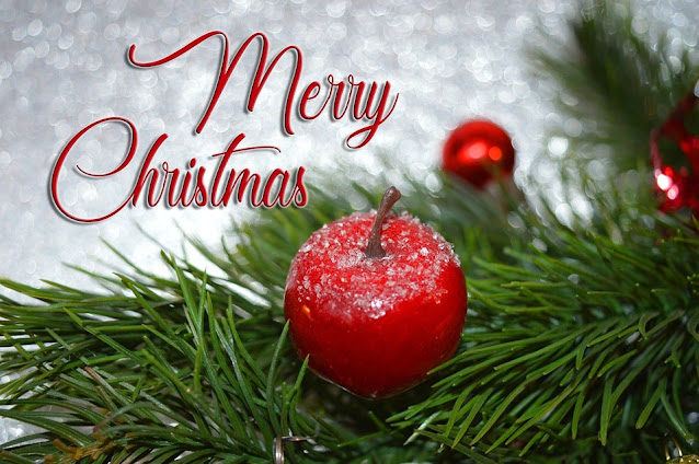 i wish you a merry christmas greetings 2021