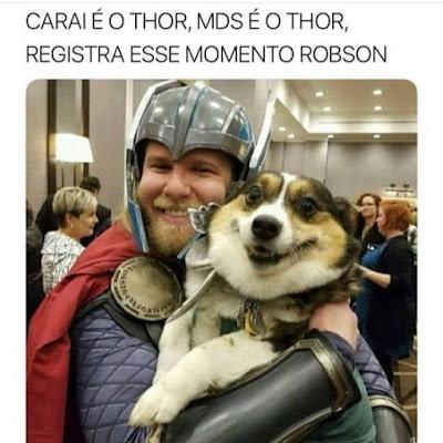 memes, melhores memes da net, melhor site de memes, site de memes, memes brasil, humor, engraçado, memes engraçados, comedia , thorm, cachorro feliz