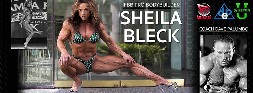 Sheila Bleck Facebook Banner Graphic Design