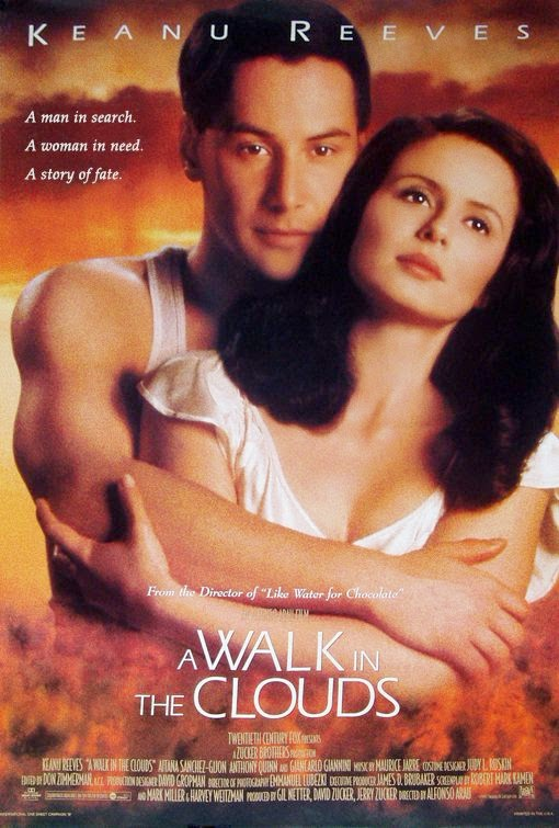 A Walk in the Clouds (1995) ταινιες online seires oipeirates greek subs
