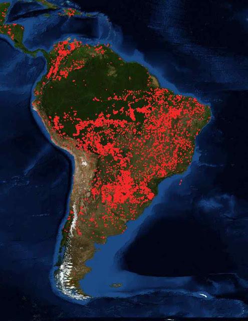Fogos na América do Sul, agosto 2019. O maior número é na Bacia do Prata, no cerrado e sistemas minores Fonte: FIRMS