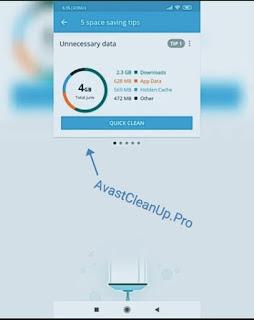 avastcleanup Pro