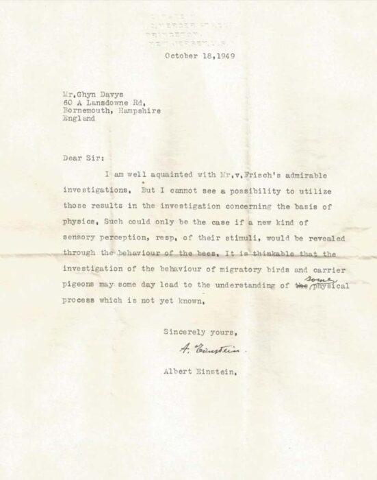 Hallan una carta perdida de Einstein donde asegura que las aves se orientan por un sexto sentido