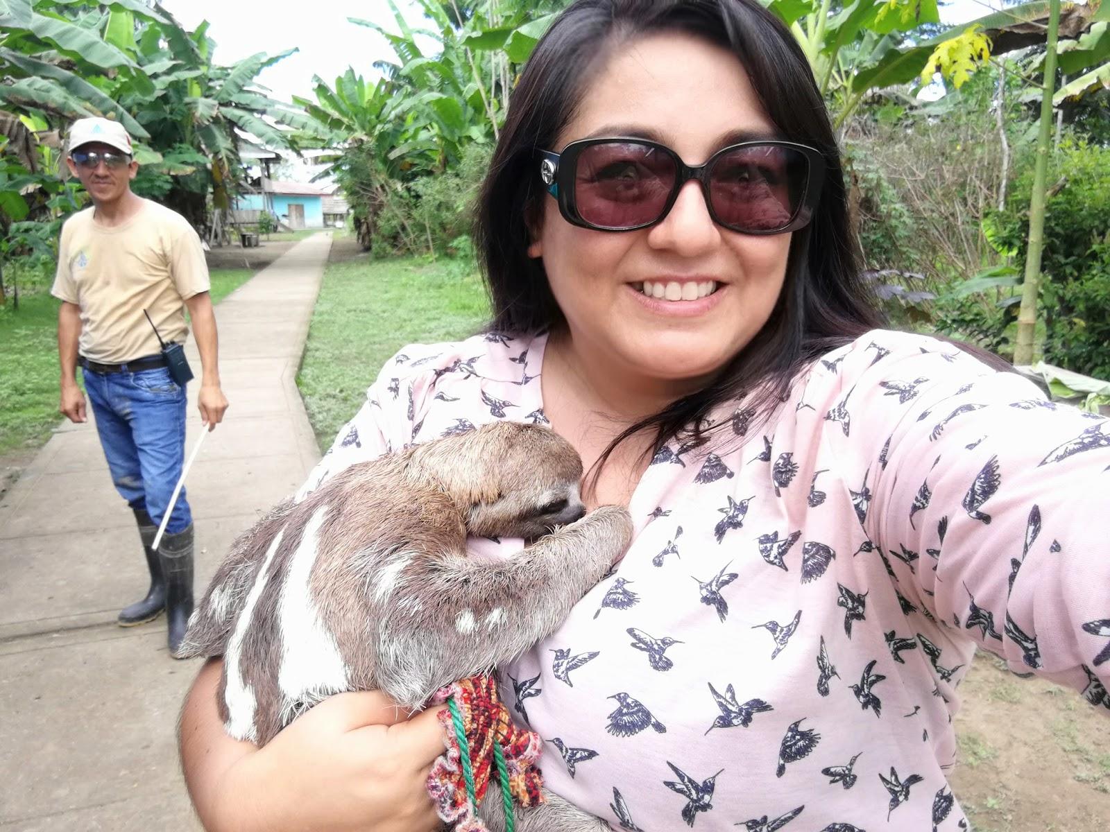 Oso Perezoso, Iquitos