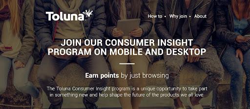 toluna consumer insight program