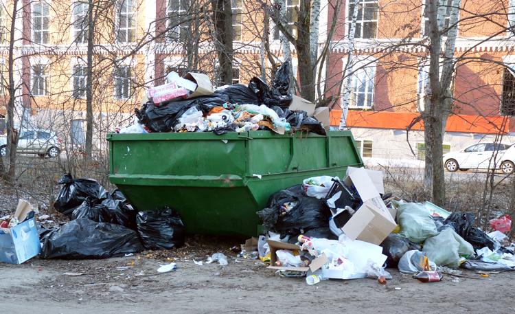 Мусорный контейнер в г. Егорьевск (Московская Область)