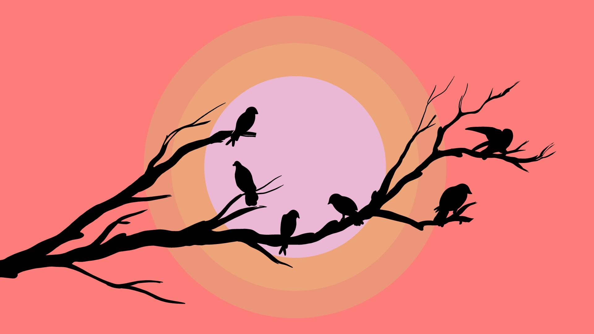 CUTE, BIRDS, MINIMALISTIC, 8K
