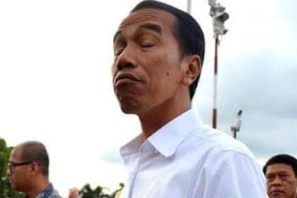 Greenpeace: Jokowi Hanya Lip Service Tangani Kebakaran Hutan