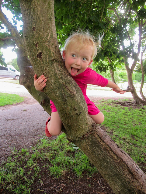 Little in a tree pulling a silly face