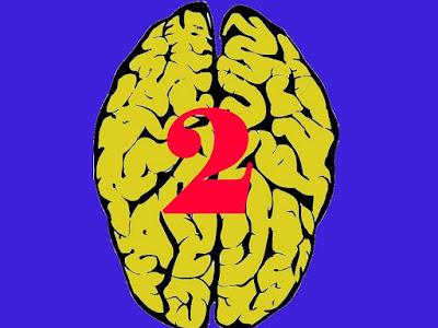 """أخيرا العلماء يكتشفون كيف يعمل """"المخ الثاني""""  للإنسان !"""