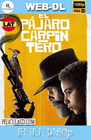 El Pájaro Carpintero (2020) Full HD Temporada 1 WEB-DL 1080p Dual-Latino VIP