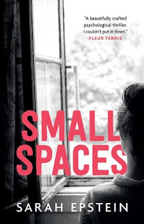 Small Spaces by Sarah Epstein book cover