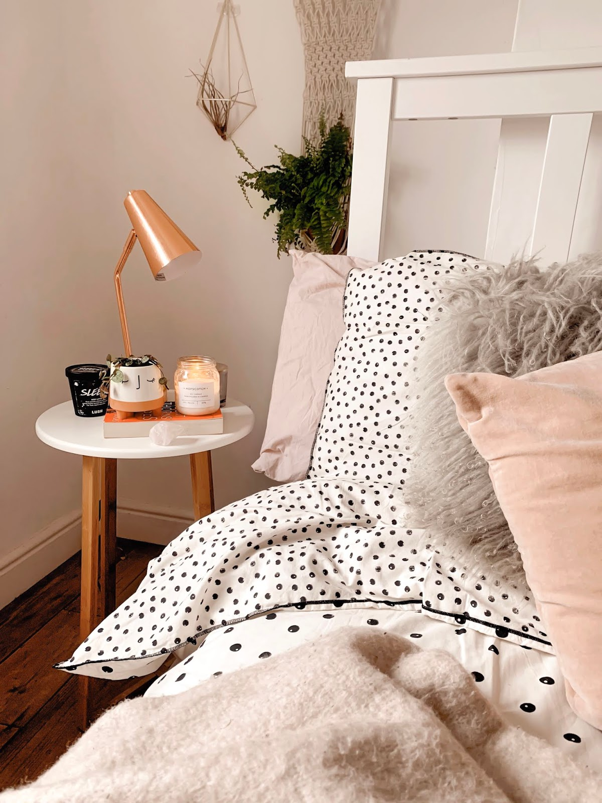 Pink Polka Dot House Plant Cosy Home Pinterest
