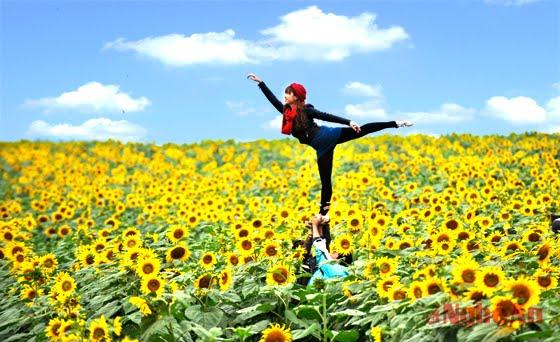 Phượt cánh đồng hoa hướng dương
