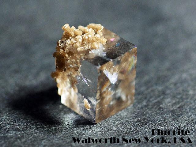 フローライト 蛍石 Fluorite Walworth New York, USA